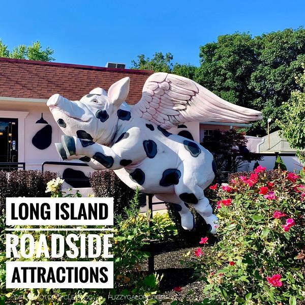 Flying Pig  roadside attraction long island
