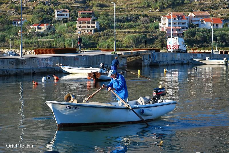 דייג שט.jpg