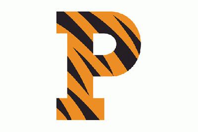 Princeton University (2009 - 2011)
