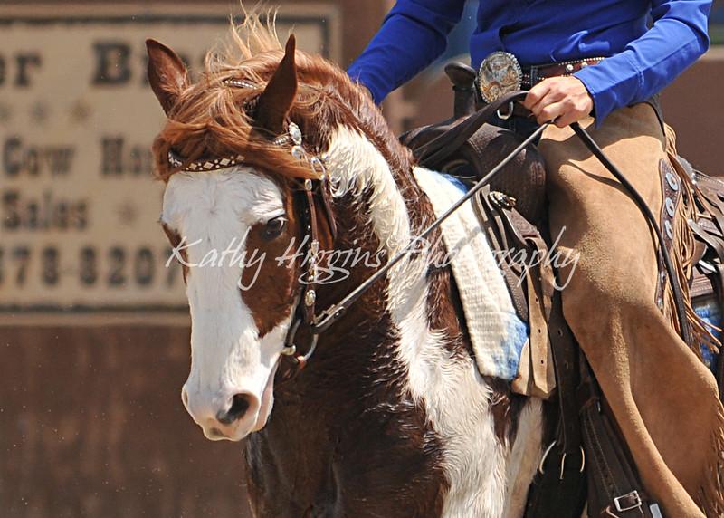VCHA Non Pro Jr Horse & NRCHA Non Pro Hackamore