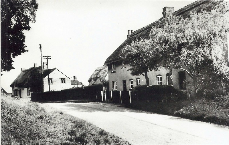 Badbury cottages at the start of the Drove