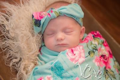 Amelia newborn
