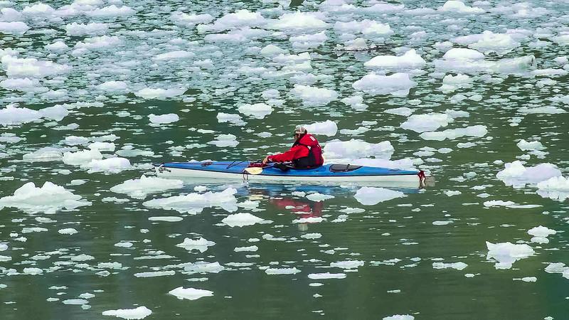 Glacier Bay 18.jpg