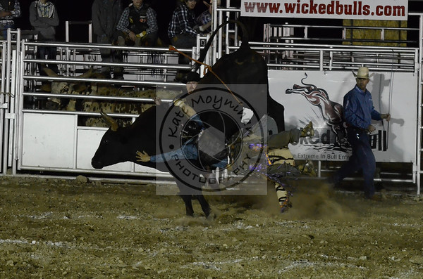 Wicked Bull Rodeo