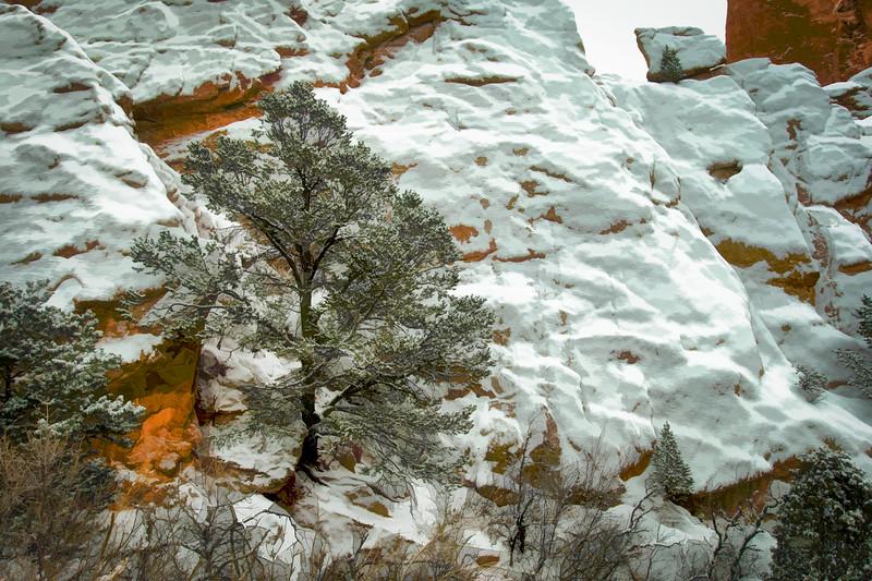 20150102-second_snow-001.JPG