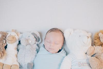 Samuel Steiner newborn shoot