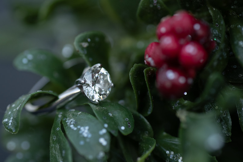 Mistletoe and Snow (color)