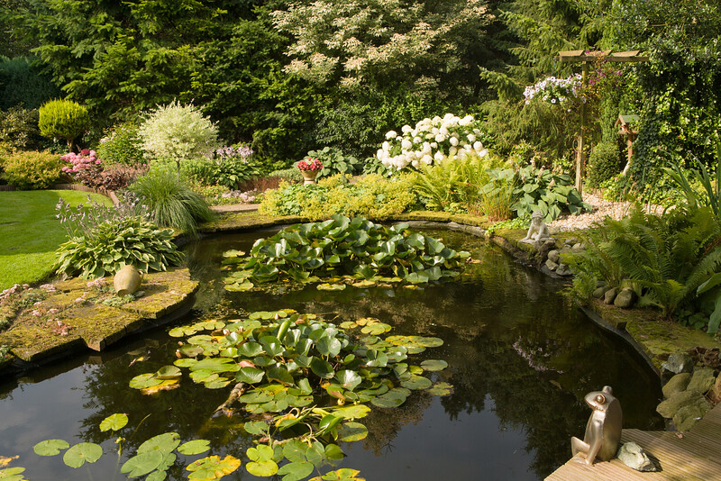 Garden with pond at Ermelo