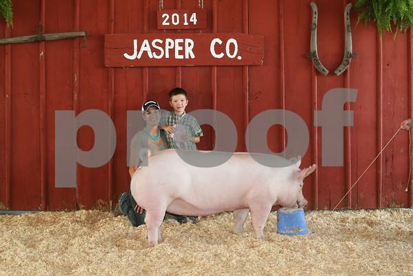 Pig Show - Open