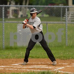 Teener League Baseball 2014