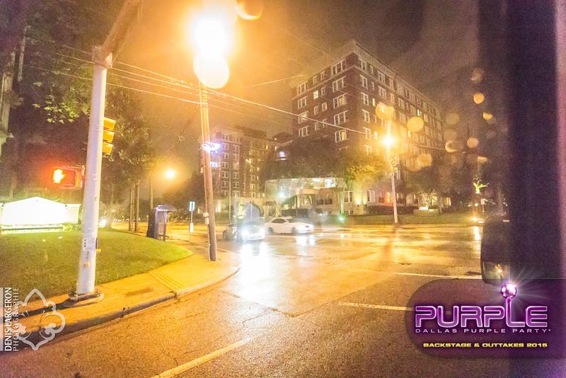 2015-Purple--9737.jpg