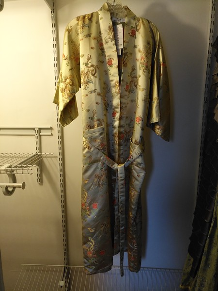 Dragon robe $25 NEW with tags- OS