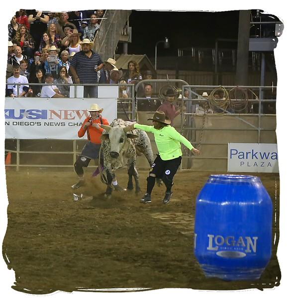 RDO Bullfighters taking the bull by the horns.jpg