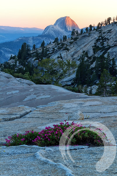 Half Dome at sunset from Olmsted Point, Tuolumne Meadows, CA