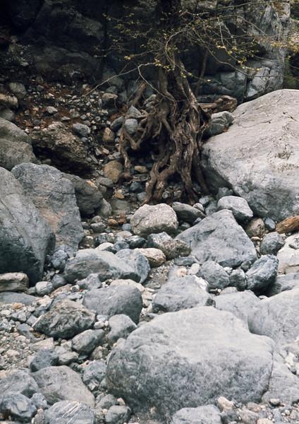 790406_Kreta-31.jpg