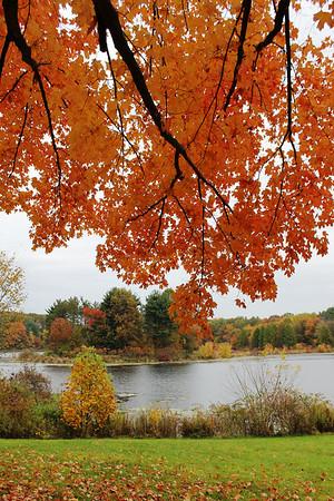 Fall Photos 2014
