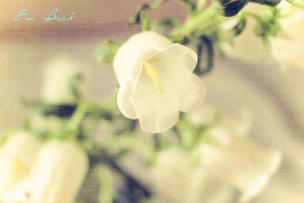 linen flowers web.jpg