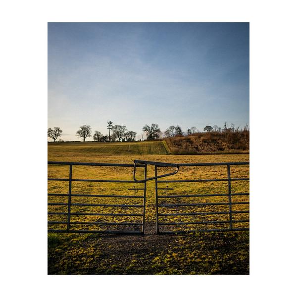 354_Gate&Field_10x10.jpg
