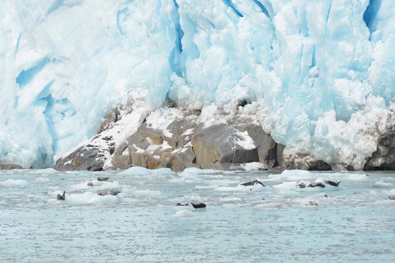 Alaska Fall 2013 - 66.jpg