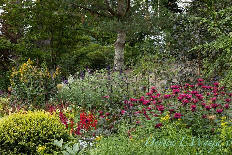 Whit & Mary Carhart garden_6190.jpg