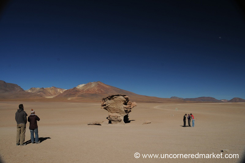Stone Tree Landscape - Salar Tour, Bolivia