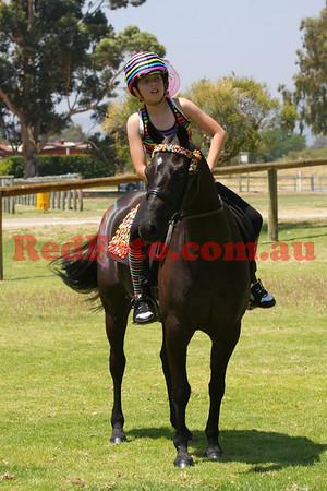 2009 Showhorse