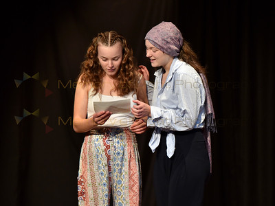 Wellington Girls' College: Two Gentlemen of Verona - Act I sc ii
