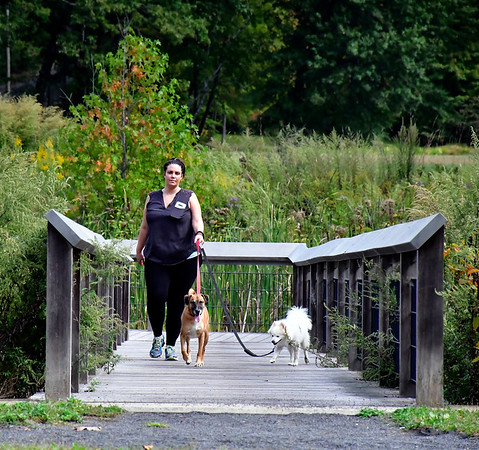 10/2/2019 Mike Orazzi | StaffrKarisa Coker while walking her dogs Louie,4 and Kooda,8, in Bristol's Rockwell Park on Wednesday.