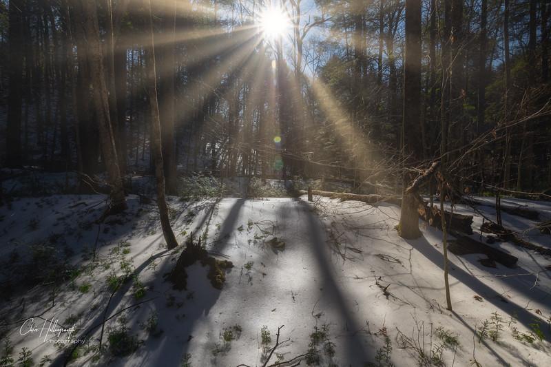 IMG_4842_Luminar3-edit.jpg