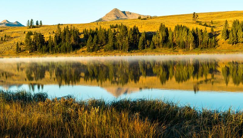 Swan-Lake-v2-7.jpg