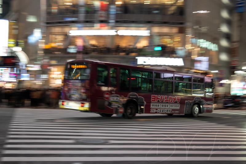 JapanPhotoTour20190205-15.jpg
