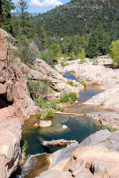 Arizona 2008_140.jpg