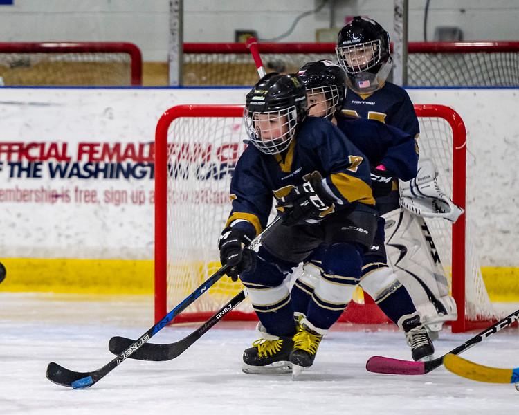 2019-02-03-Ryan-Naughton-Hockey-27.jpg