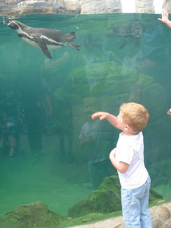 Zoo mit Simone