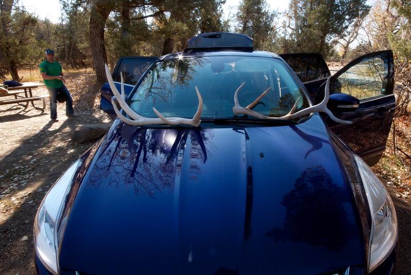Antlers of elk Teddy Roosevelt National Park ND IMG_0070107.CR2.jpg