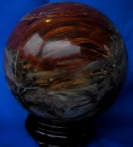 Petrified Wood Sphere 102