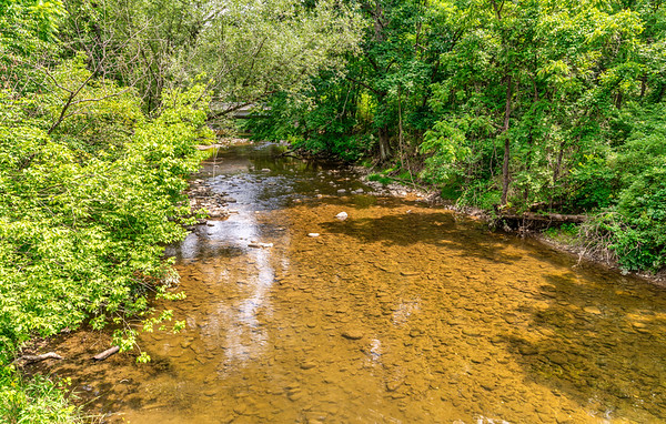 Jacobsburg State Park, 7-16-20 (D780)