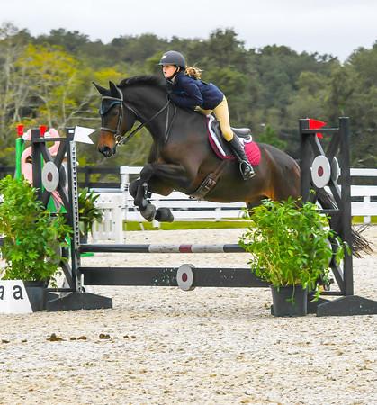 Grand Oaks -  Jumpers