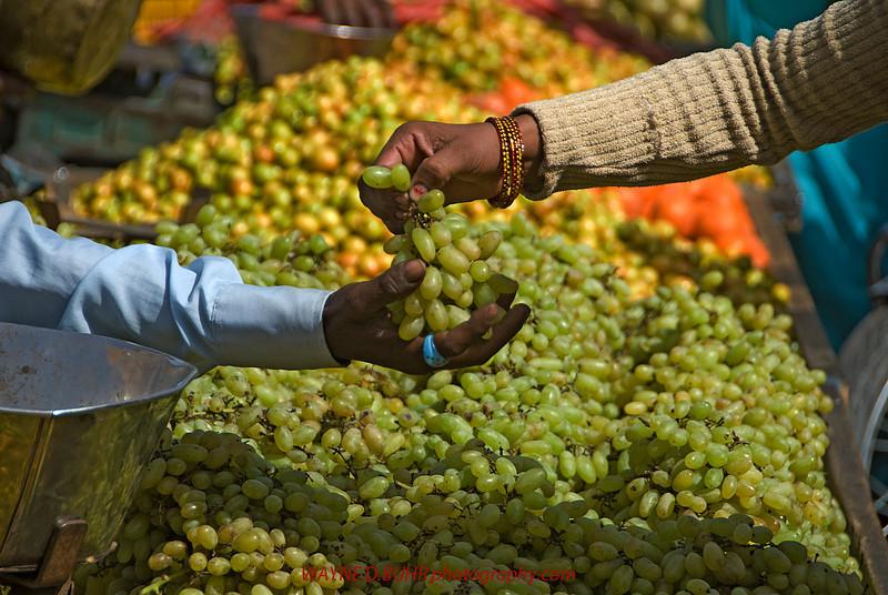 India2010-0211A-471A.jpg