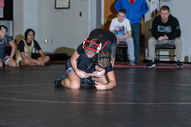 Girls Wrestling 1_21_20-40.jpg