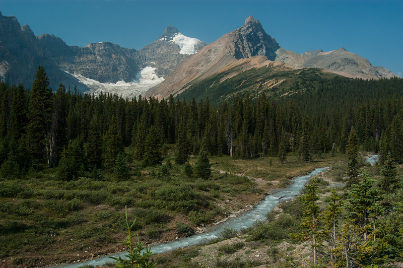 Along Icefields Parkway