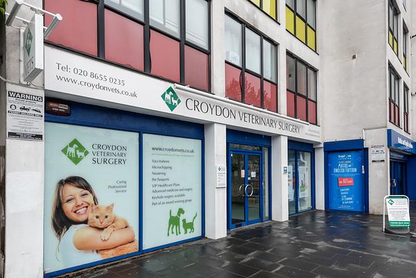 Croydon Vets