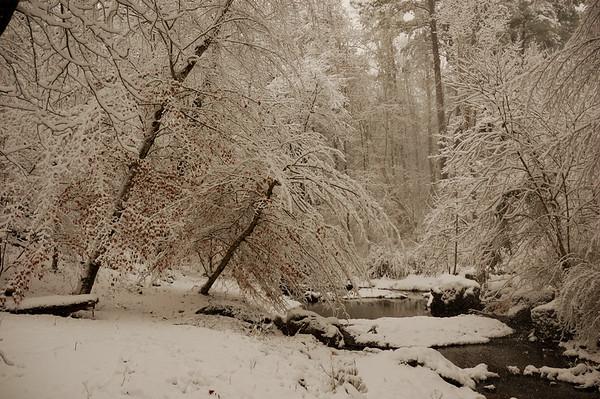 Creek December 2010