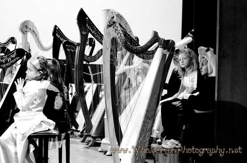 20121027_Harp_0043.jpg