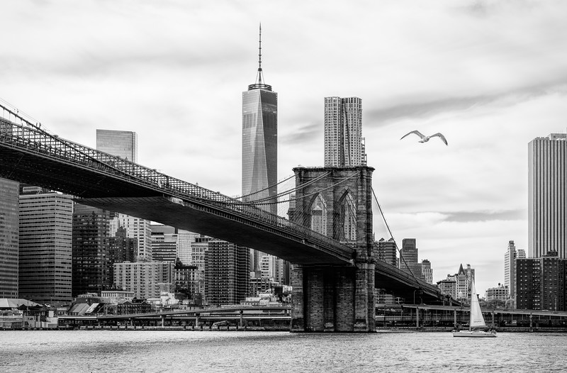 Broolyn Bridge + Freedom Tower - bw-.jpg