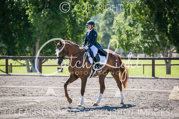 Equestrian Events 2019