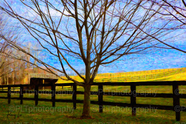 ARTISTIC TREES AND LANDSCAPES