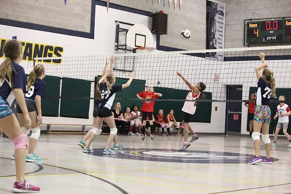 2016-Volleyball