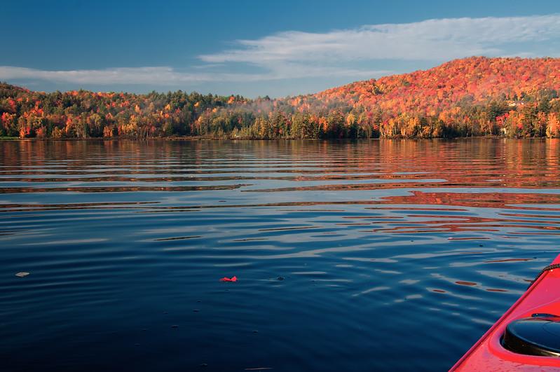 Blackwater paddle.jpg