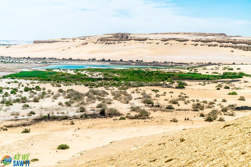 Wadi-El-Hitaan-02517.jpg